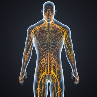 Reflexology for Lymphatic Drainage